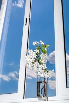 Zweig der kirschblüte gegen das fenster und den himmel