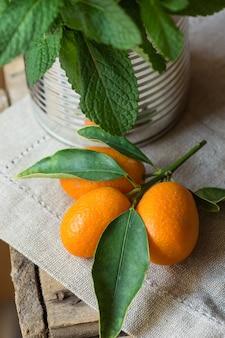 Zweig der reifen organischen kumquats-grün-blätter