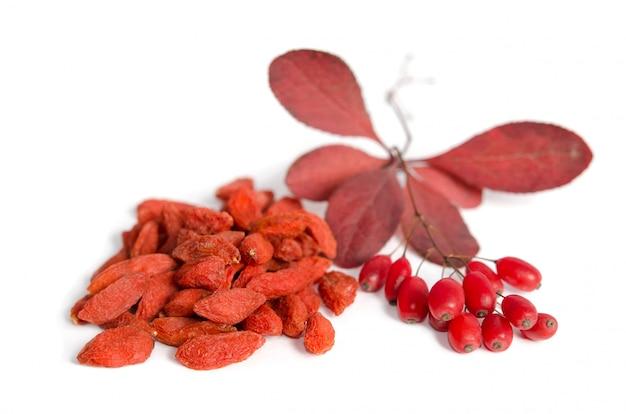 Zweig der reifen roten berberitzen und getrockneten goji-beeren lokalisiert auf weißem raum
