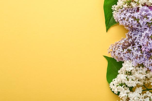 Zweig der schönen weißen flieder auf gelbem hintergrund. ansicht von oben. festliche grußkarte mit flieder für hochzeiten, happy womens day valentinstag und muttertag.
