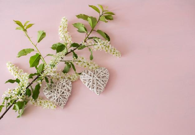 Zweig der weißen vogelkirsche und der herzen auf einem rosa hintergrund