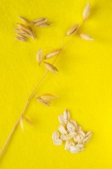 Zweig hafer, haferflocken und haferkorn auf gelbem hintergrund
