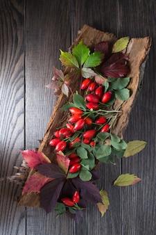 Zweig mit beeren rrose hüfte auf der rinde eines baumes auf dunklem tisch