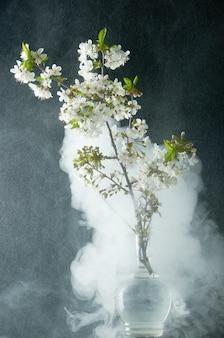 Zweig von kirschblüten im rauch und im wasser fällt auf schwarzes