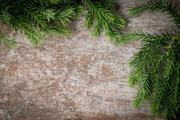 Zweige arborvitae, wacholderzweige auf holz weihnachten hintergrund