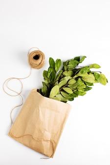 Zweige der lorbeer-lorbeerblätter in papier