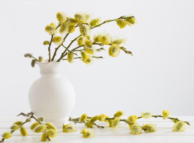 Zweige der weidenkätzchen mit blühender knospe in der vase mit wasser auf weißem hintergrund