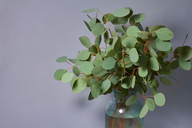 Zweige des eukalyptus in der vase auf dem tisch. wohnkultur. blog-, website- oder social-media-konzept.