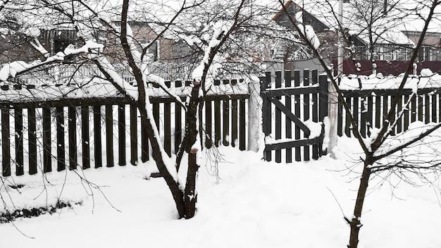 Zweige des jungen apfelbaums unter schnee am sonnigen frostigen morgen, zaun im hintergrund
