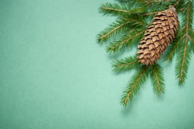 Zweige eines weihnachtsbaumes und eines tannenzapfens auf einem grün