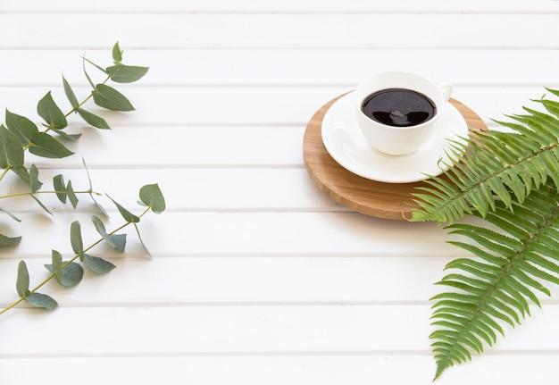 Zweige von grünem eukalyptus, farn und tasse schwarzen kaffees.