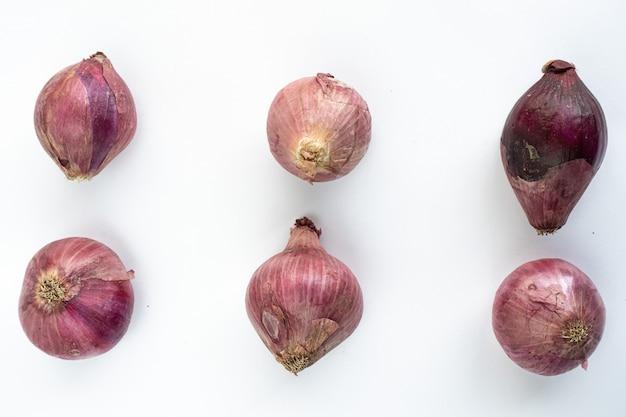 Zwiebeln auf einem weißen hintergrund getrennt