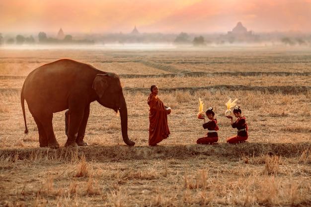 Zwillingsmädchen im kuay-stammeskostüm verdiene für die mönche, die almosen erhalten haben mit tempeljungen, die männer und elefanten sind am morgen in surin, thailand
