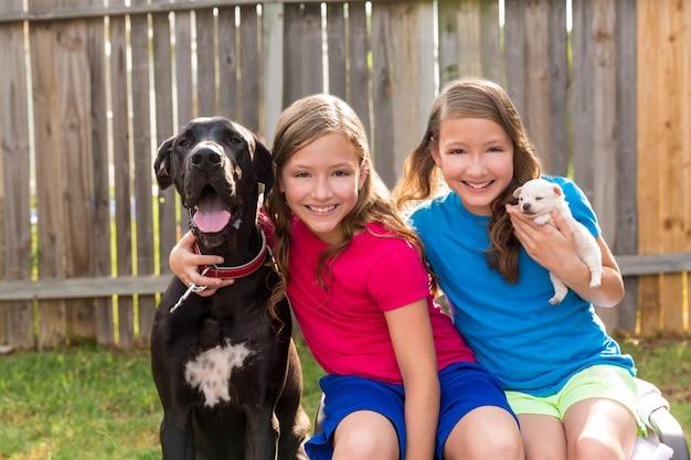 Zwillingsschwesterwelpenhaustierhund und dogge spielen