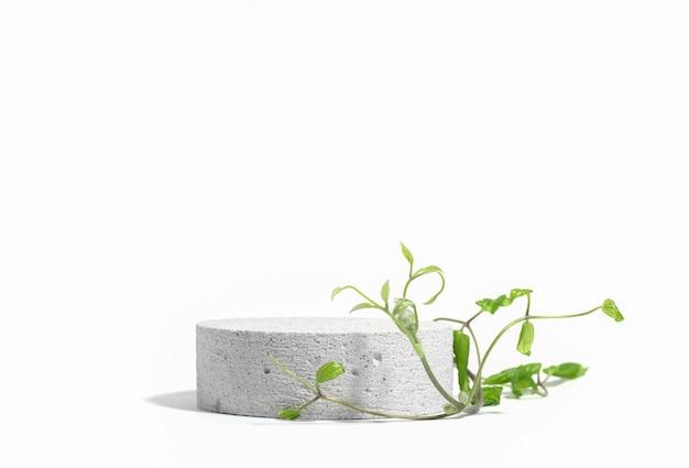 Zylindrisches steinbeton-öko-podium auf weißem hintergrund mit harten schatten und grüner tropischer kletterpflanze. stehen sie für die präsentation ihres produktes. platz kopieren