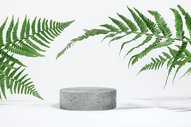 Zylindrisches steinbeton-ökopodium auf weißem hintergrund mit harten schatten und tropischen farnblättern. minimale leere präsentationsszene für kosmetische produkte. geometrisches podium.