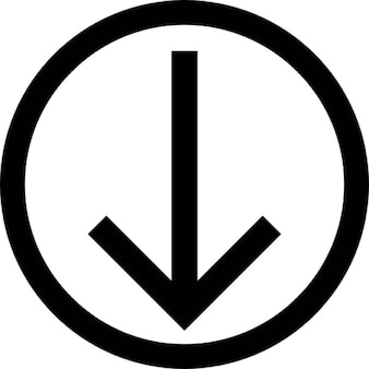 Arrow down thin outline inside a circle outline