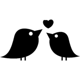Couple of love birds