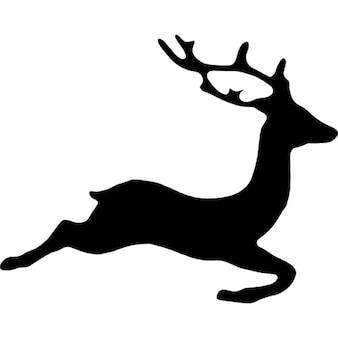 Deer shape