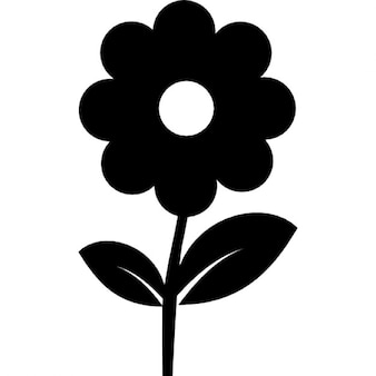 Flower in black