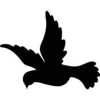 Flying dove bird shape