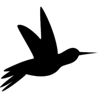 Humming bird black side silhouette