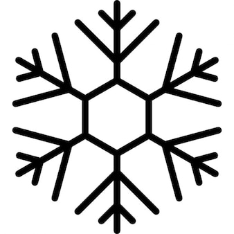 Snowflake design with thin lines on hexagonal shape