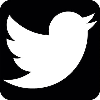 Twitter social network symbol