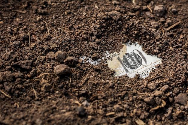 Банкнота 100 долларов была найдена под землей.