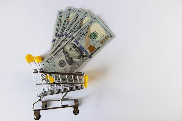 100 dollar bills in a mini shopping cart on a white background top view flat lay