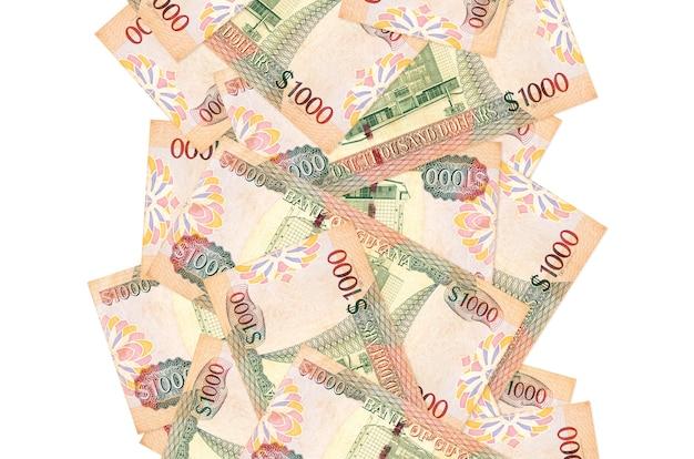 1000 가이아나 달러 지폐에 고립 된 흰색 아래로 비행. 왼쪽과 오른쪽에 흰색 복사 공간이 떨어지는 많은 지폐