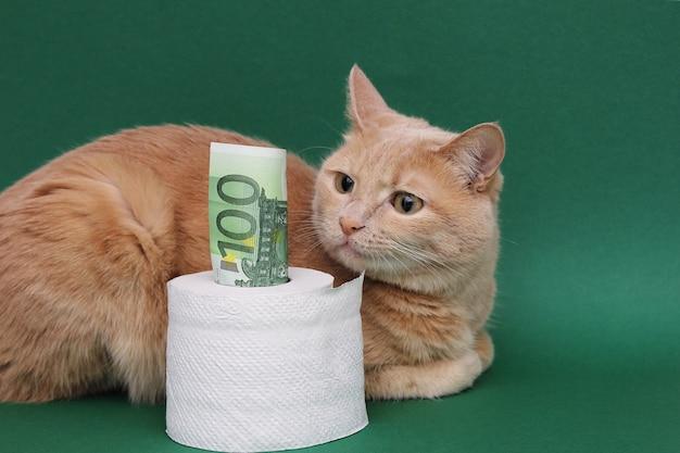100ユーロ紙幣がトイレットペーパーのロールから突き出ています。赤猫が隣に横たわって見つめています。