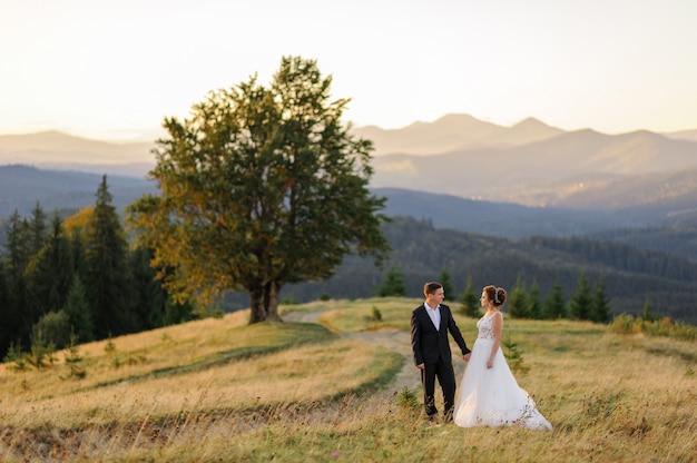 山での結婚式の写真。新郎新婦は、古い100年のブナの風景に手を握っています。