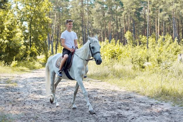 馬の散歩、夏の森の白い馬に乗って10代の少年