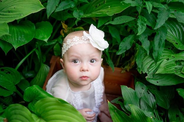 Красивая девочка 10 месяцев сидит в траве летом в белом платье