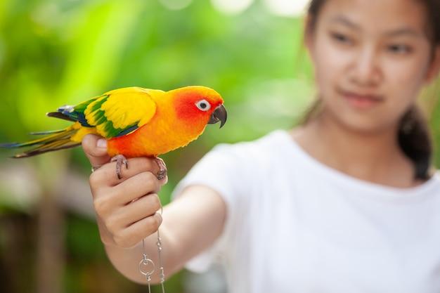 女性の手の上に立って美しいオウム鳥。アジアの10代の少女が彼女のペットのオウム鳥と遊ぶ