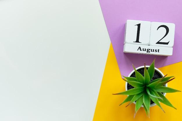 Концепция календаря месяца двенадцатого августа двенадцатый день на деревянных блоках с копией пространства