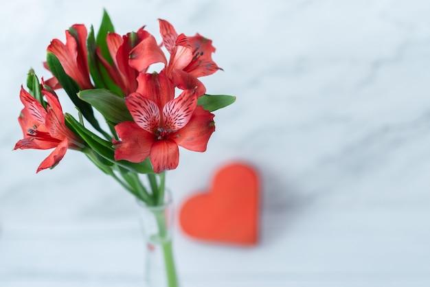 Красные цветы и красное сердце на белом фоне деревянные. открытка на 14 февраля. крупный план с пространством для текста. концепция любви