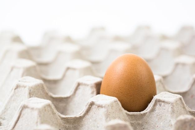 リサイクルペーパートレイに1卵