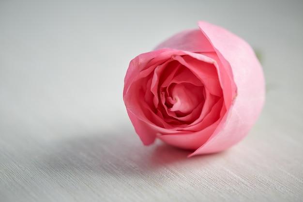 机の上の1つのピンクのバラ