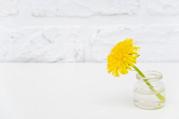 白いレンガの壁にボトルの花瓶に1つの黄色のタンポポ