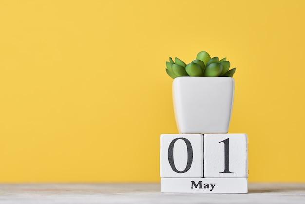 Деревянный блок-календарь с датой 1 мая и сочные растения в горшке. концепция дня труда