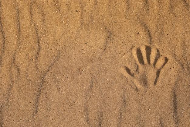 砂の上の手形。砂、ビーチの海で1つの手形のクローズアップ。