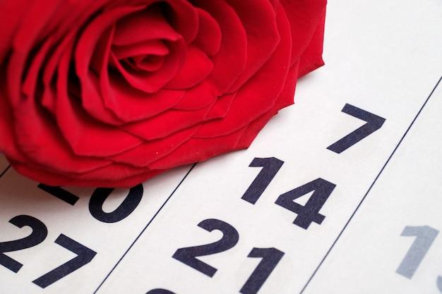 2月14日の日付の隣に新鮮な赤いバラが浮かびました。バレンタインデーのコンセプト。