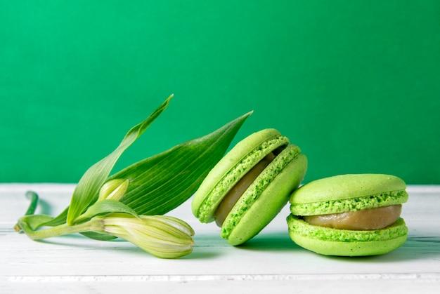 흰색과 녹색 표면에 꽃 봉오리가있는 2 개의 녹색 마카롱 쿠키