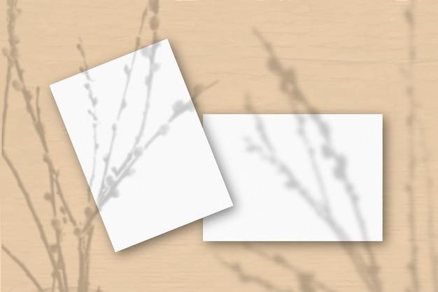 2 листа белой текстурированной бумаги на розовой стене. наложение мокапа с тенями растений. естественный свет отбрасывает тени от веток ивы. плоская планировка, вид сверху. горизонтальная ориентация.
