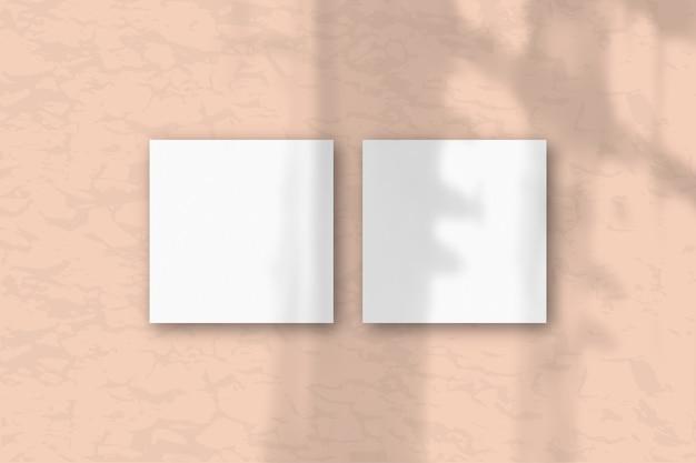 2 квадратных листа белой текстурированной бумаги на розовом фоне стены. макет с наложением теней растений. естественный свет отбрасывает тени из окна. плоская планировка, вид сверху. горизонтальная ориентация