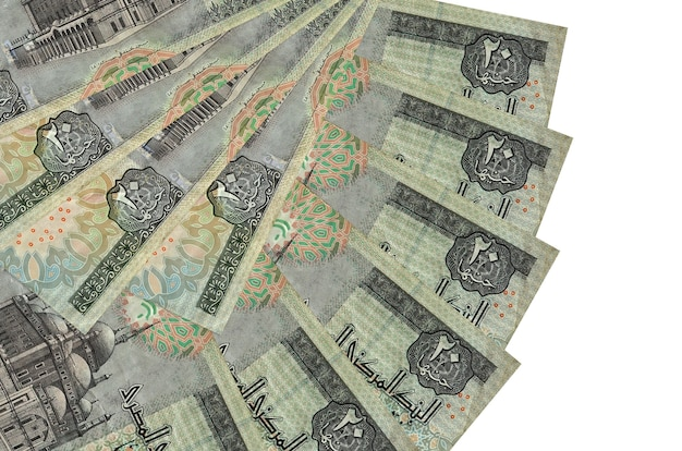 20 egyptian pounds bills lies isolated on white wall with copy space stacked in fan shape close up. financial transactions concept