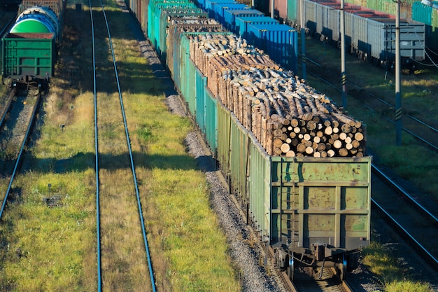 鉄道駅で丸太が付いている車。サンクトペテルブルク、ロシア連邦、2016