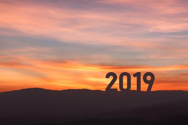 2019年新年